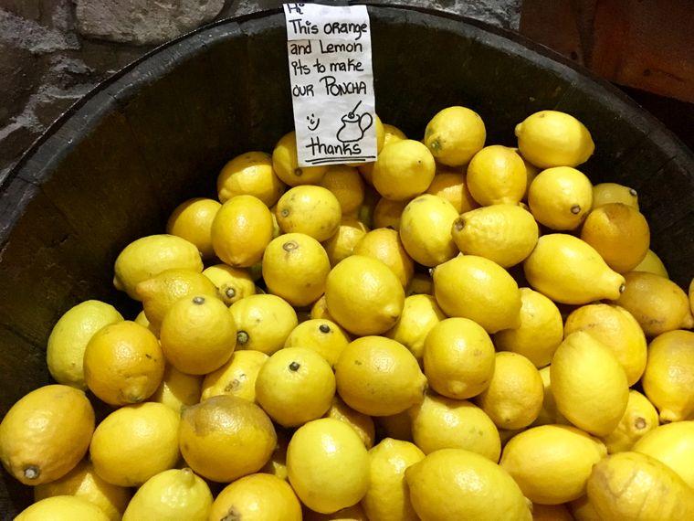 Die frischen Zitronen werden für die Poncha-Zubereitung verwendet.