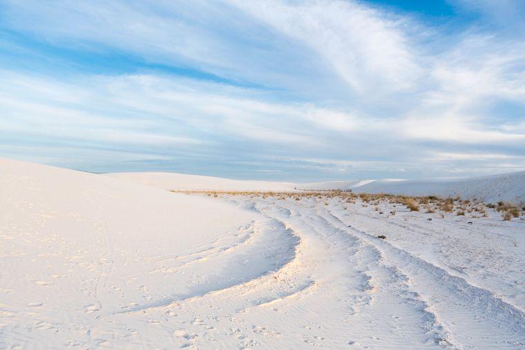 Die Chihuahua-Wüste durchläuft die Grenze zwischen Mexico und Amerika und umfasst als Ökoregion ein Gebiet von insgesamt 500.000 Quadratkilometern.