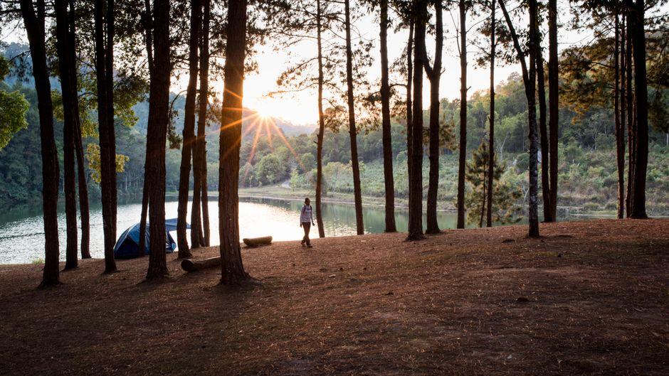 Beim Camping ist richtiges Verhalten wichtig, um die Waldbrand-Gefahr zu minimieren. (Symbolbild)