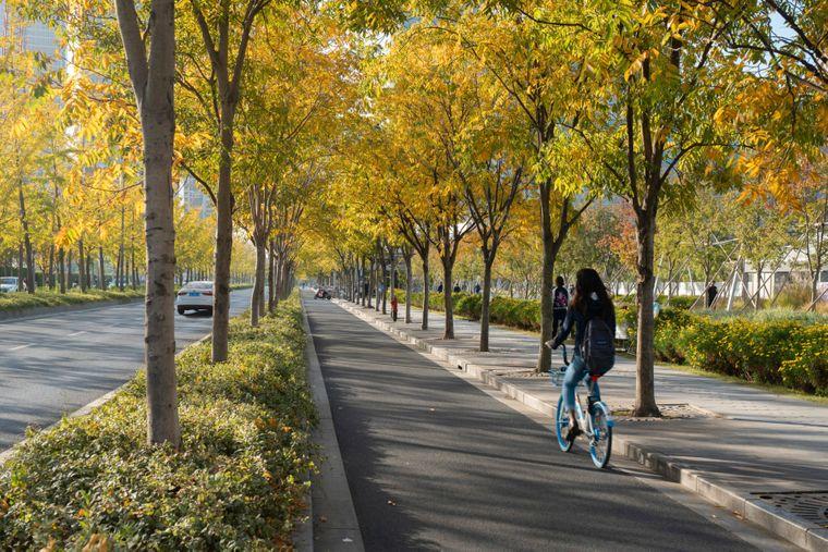 Viel Platz für Fahrradfahrer und Fußgänger – die ehemalige Landebahn eignet sich dafür.