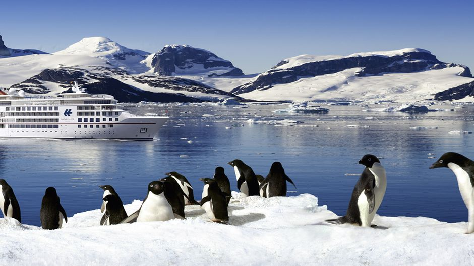 Ein Expeditionsschiff in der Antarktis