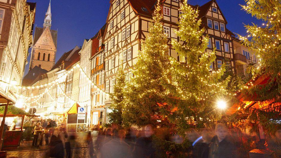 Eingang des Wunschbrunnenwaldes in der Altstadt