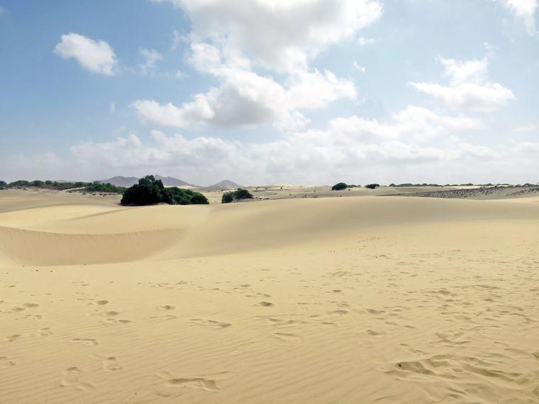 Die Dünen der Kapverden