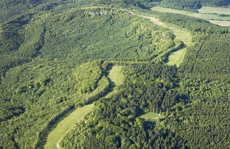 Eine breite Schneise durch Waldgelände an der Grenze von Thüringen und Hessen – hier verlief früher die innerdeutsche Grenze. Heute ist es das Naturschutzprojekt Grünes Band Deutschland.