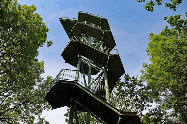 Bei windigem Wetter wird der Aufstieg auf den Turm im Rosental wackelig.