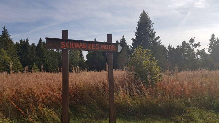 Das Schwarze Moor in der Rhön ist ein Schaufenster der Natur und Teil des Unesco-Biosphärenreservats.