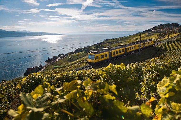 Der Rebbergzug Le Train des Vignes von Vevey nach Puidoux durchquert aussichtsreich das Gebiet Lavaux am Genfersee, Kanton Waadt.