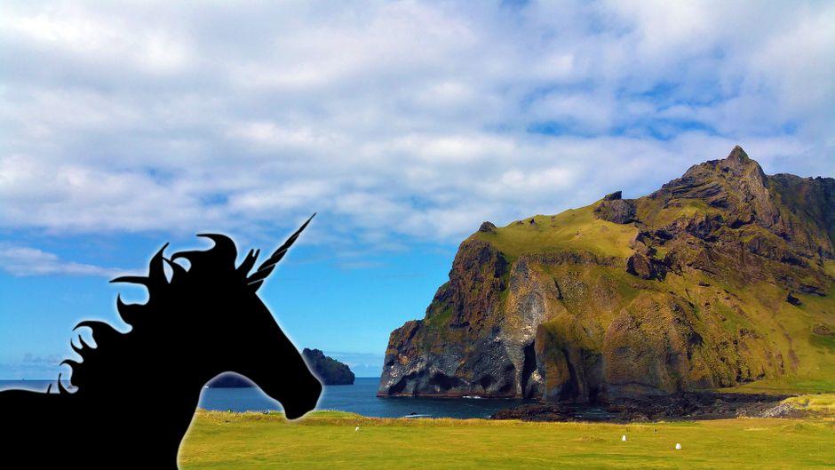 Island: Ein Einhorn auf der Wiese. (Fotomontage: Dario Teschner)