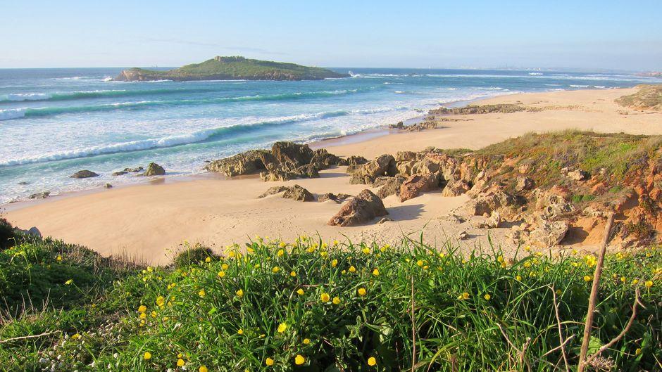 Die Küste des Alentejo bietet viele einsame Strände – zum Beispiel die Praia da Ilha südlich von Sines, wo die Dünenstrände in die Klippenküste übergehen.