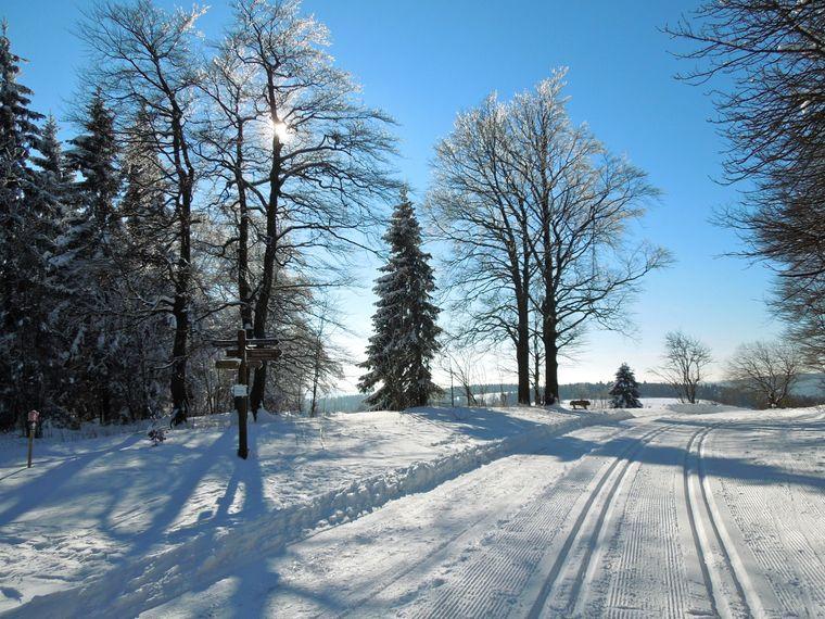 Winterwetter im Deister: Auch in Niedersachsen kann Skilanglauf betrieben werden.