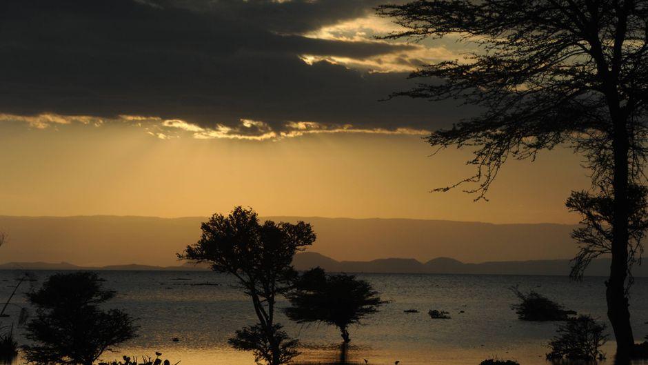 Blick auf den Lake Naivasha in Kenia bei Sonnenuntergang
