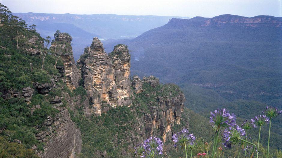 Die Blue Mountains befinden sich im Nationalpark westlich von Sydney. Atemberaubende Felslandschaften und einmalige Pflanzen findest du hier.