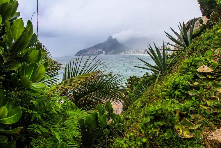 Brasilien erstreckt sich vom Amazonas-Becken bis zu den Weinbergen und Iguacu-Wasserfällen. Das Wahrzeichen ist, na klar, die 38 Meter hohe Christusstatue in Rio de Janeiro. Berühmt sind außerdem die Strände der Copacabana und Ipanema sowie der ausgelassene Karneval.
