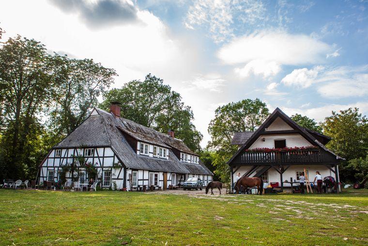 Ponyhof Witthof in der Nähe von Hamburg
