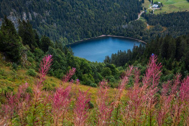 Die wunderschöne Aussicht vom Feldberg.
