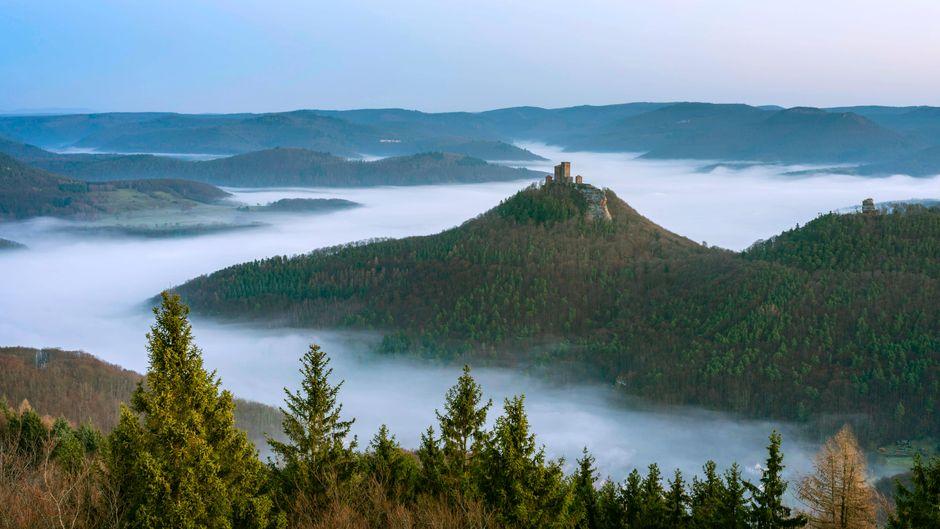 Blick vom Rehbergturm auf die Reichsburg Trifels und die Burg Anebos im Pfälzerwald – atemberaubend, oder?