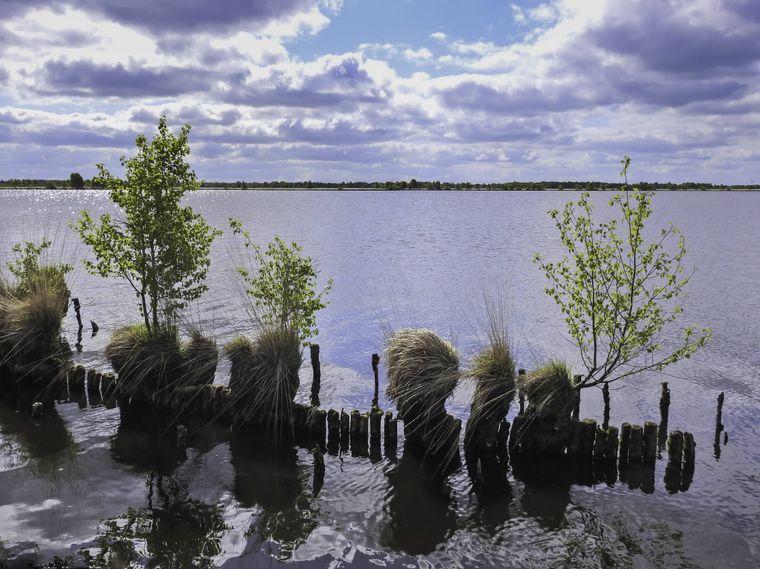 Ostfriesland wartet mit landschaftlicher Vielfalt und tollen Möglichkeiten für Aktivitäten in der Natur auf dich.