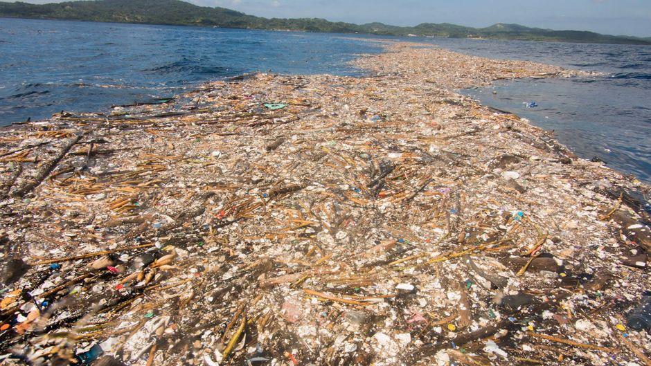 Müll schwimmt im Karibischen Meer vor der Insel Roatán.