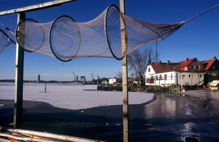Eine Fischreuse an der zugefrorenen Schlei.