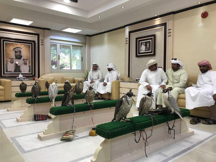 """Blick ins Wartezimmer der Falkenklinik von Abu Dhabi: Hier werden die """"Kinder der Beduinen"""" behandelt."""