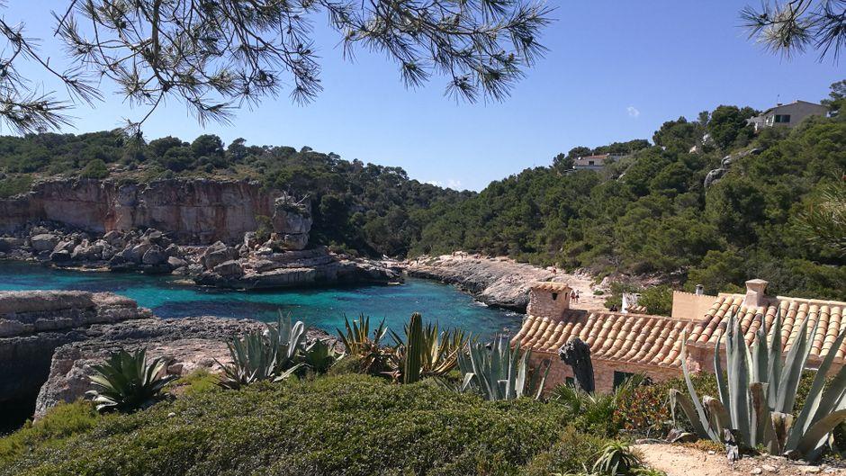 Eine kleine Oase auf Mallorca: Die Cala s'Almunia.