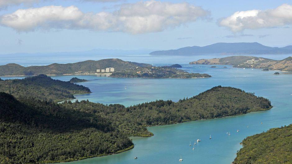 Vor der Küste von Whitsunday Island ereigneten sich innerhalb von 24 Stunden zwei Hai-Angriffe.
