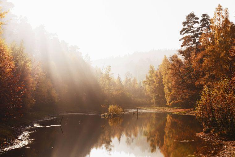Waldgeister sollen nach Mitternacht ihr Unwesen am Ungeheuersee im Pfälzerwald treiben. Tagsüber wirkt die rostrote Kulisse einfach nur gemütlich.