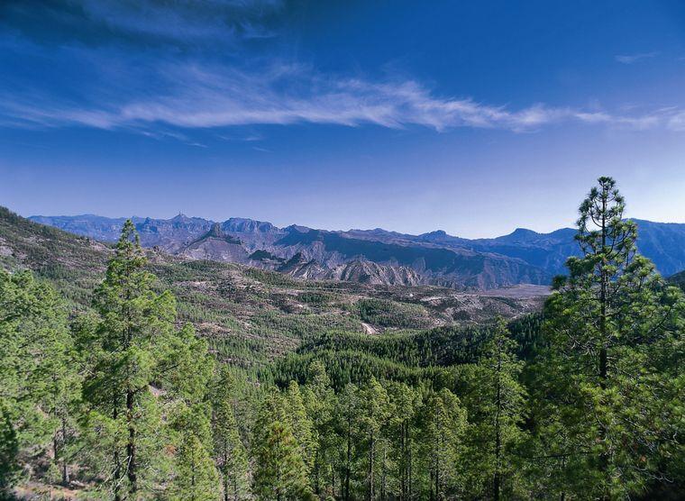 Gran Canariaistdie bekannteste Insel der Kanaren und gab der Inselgruppe auch ihren Namen.