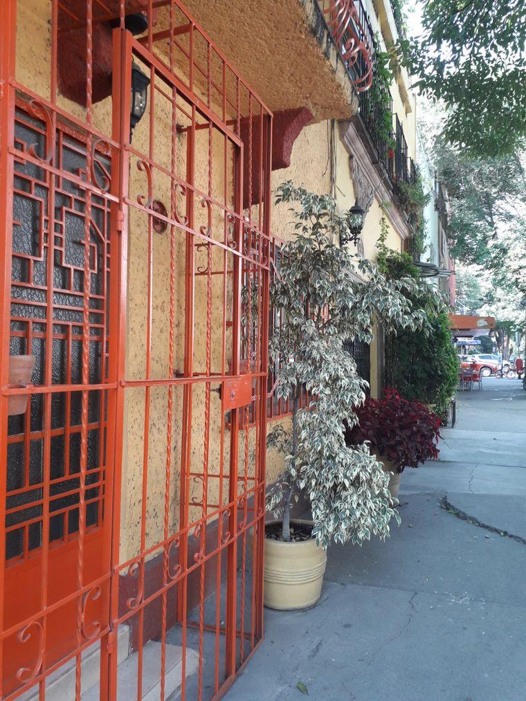 Die Häuserfassaden in Condesa erinnern an die Gassen vieler europäischer Dörfer und Kleinstädte.