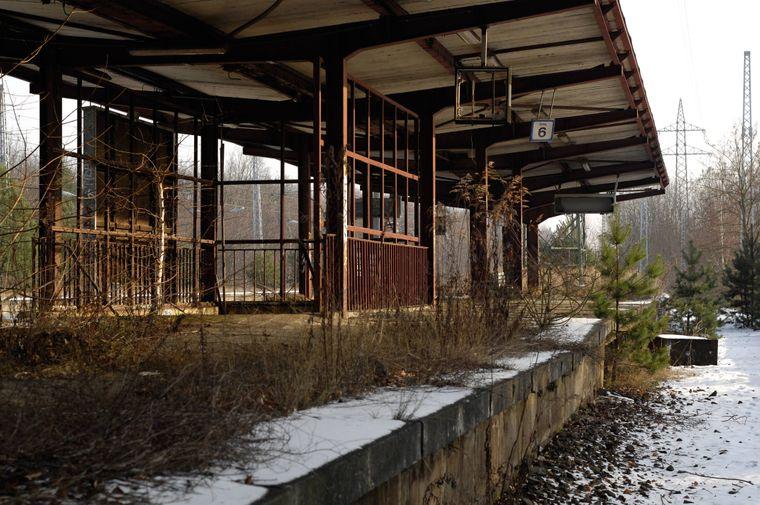 Nostalgie und Melancholie gibt es am Bahnhof Postdam-Pirschheide. Bis 1999 herrschte reger Betrieb auf den Außenringbahnsteigen – heute sind diese längst demontiert, übrig geblieben sind zwei Gleise für durchfahrende Regionalzüge.