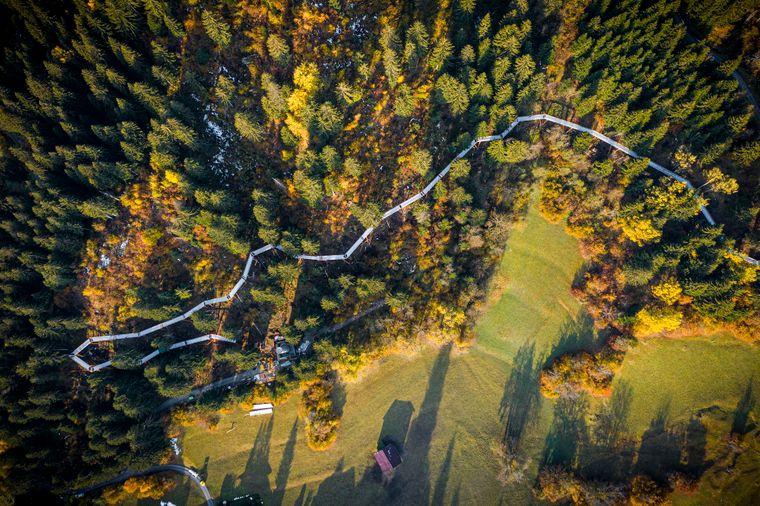 Der Baumwipfelpfad in Laax in Graubünden soll im Sommer 2021 eröffnet werden.