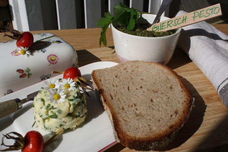 Kräuterbutter und Giersch-Pesto – Superfood aus der Natur.