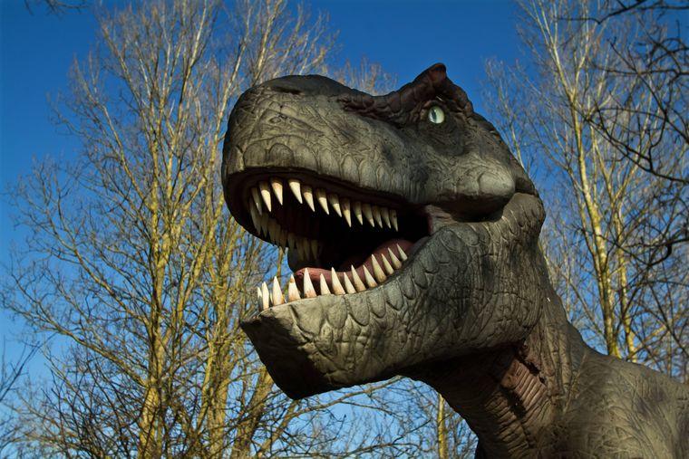 Wenn du mal was anderes erleben willst, besuche den Dinopark in der Türkei.