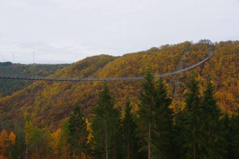 Die insgesamt 360 Meter lange Geierlay-Hängeseilbrücke im Hünsrück.