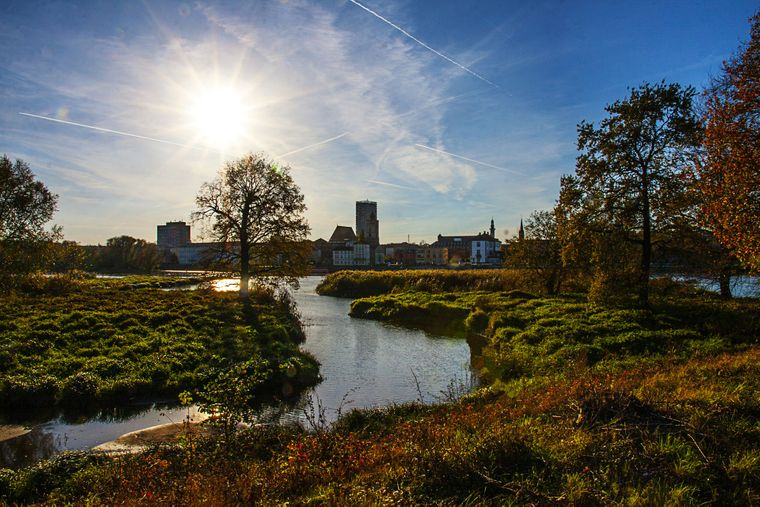 Rund um Frankfurt (Oder) und Słubice findest du jede Menge Natur.