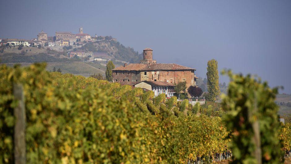 Lust auf ein eigenes Weingut im Piemont? Nichts wie hin! Zahlreiche Dörfer in der italienischen Region suchen dringend neue Einwohner! (Symbolfoto)