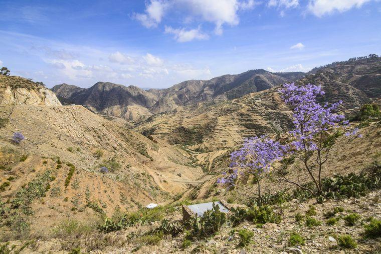 Berglandschaft zwischen Massawa und Asmara in Eritrea.