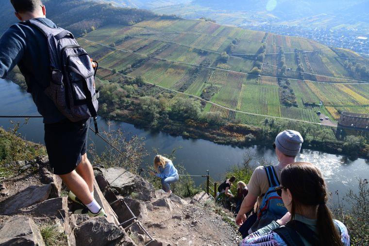 Über Leitern und schmale Pfade: Der Calmont Klettersteig geht durch den steilsten Wienberg Europas.