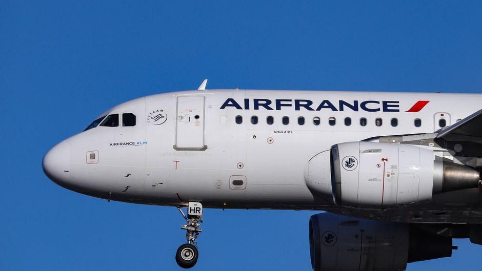 Air France will den CO₂-Ausstoß aller Inlandsflüge kompensieren.