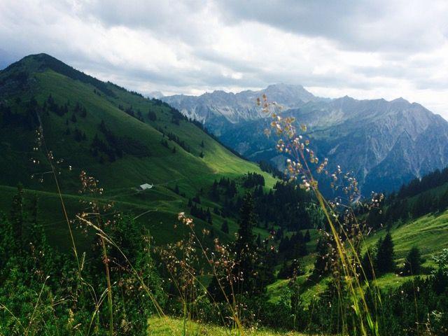 Ein Blick auf die Zipfelaple in Oberjoch.