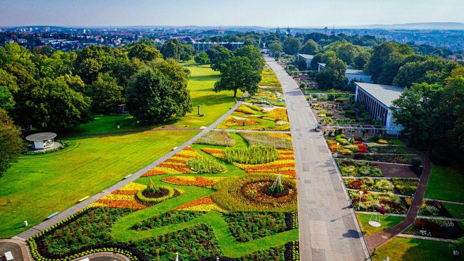 Das Erfurter Garten- und Ausstellungsgelände (Ega) ist ein wichtiger Standort für die Bundesgartenschau 2021. Einer der Höhepunkte ist hier das 6000 Quadratmeter große Blumenbeet.