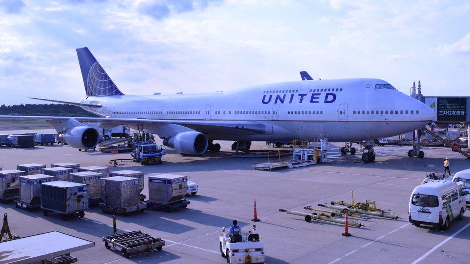 Offenbar keine gute Kombination: United Airlines und Hunde.