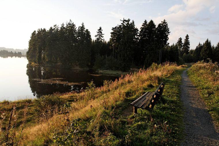 Der Harzer-Hexen-Stieg führt über den Damm des Bärenbrucher Teichs, links der Ziegenberger Teich bei Buntenbock.