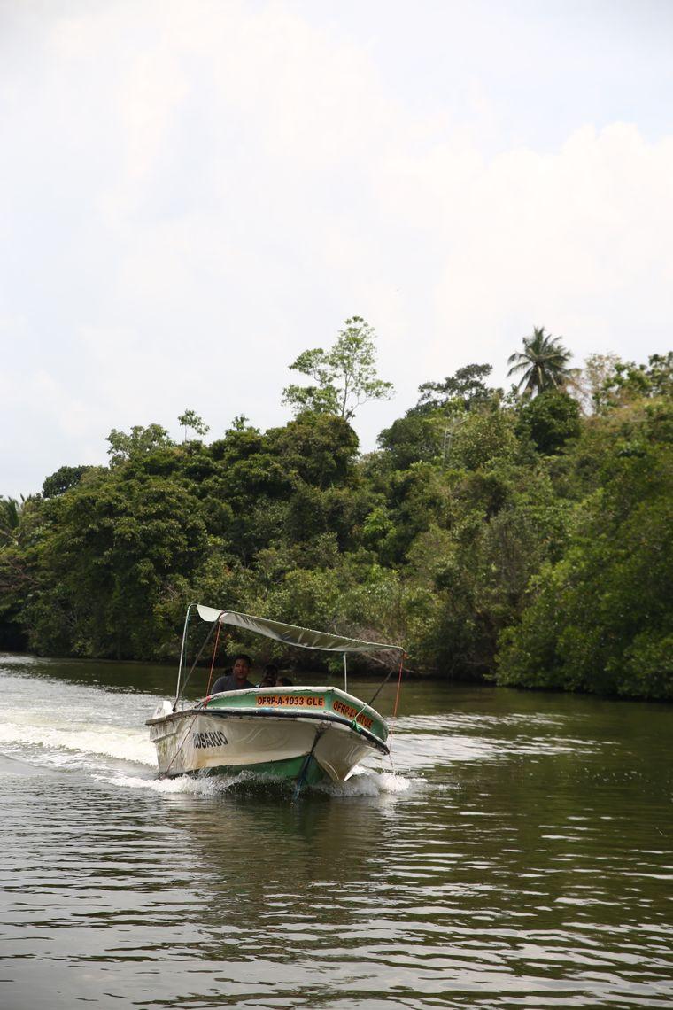 In den folgenden Tagen unternahmen sie eine Fluss-Safari auf dem Balapitiya Maduganga.