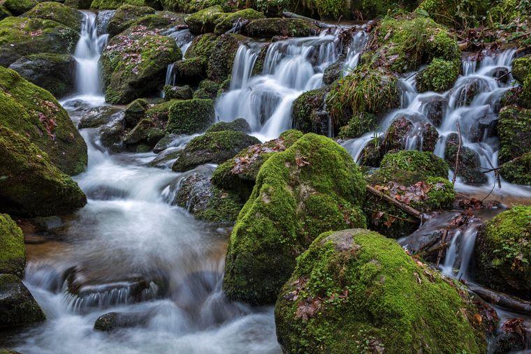 Die Gertelbach-Wasserfälle im Schwarzwald sind das Ziel vieler Wanderer.