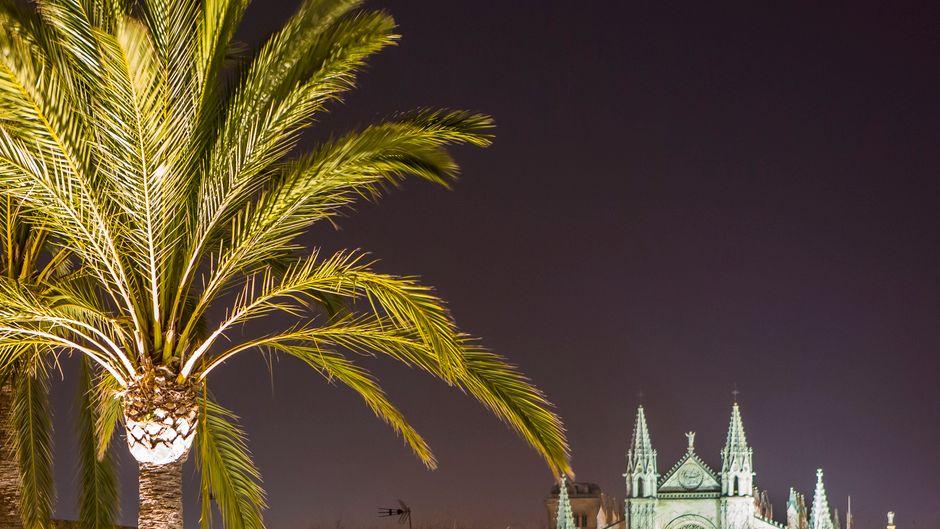 In den Bars von Palma de Mallorca kannst du deinen Urlaubstag ideal ausklingen lassen.