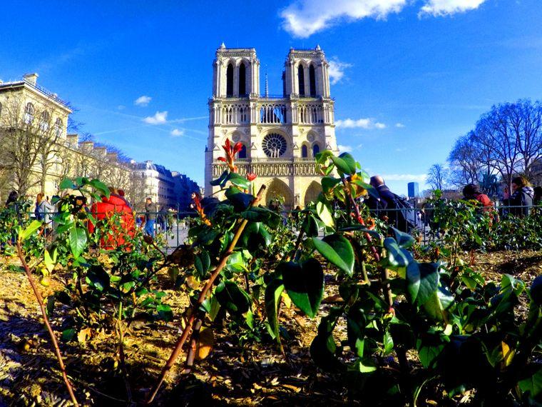 """David Roch hatte eine """"unvergessliche Reise nach Paris"""". Dabei ist dieses Foto entstanden."""