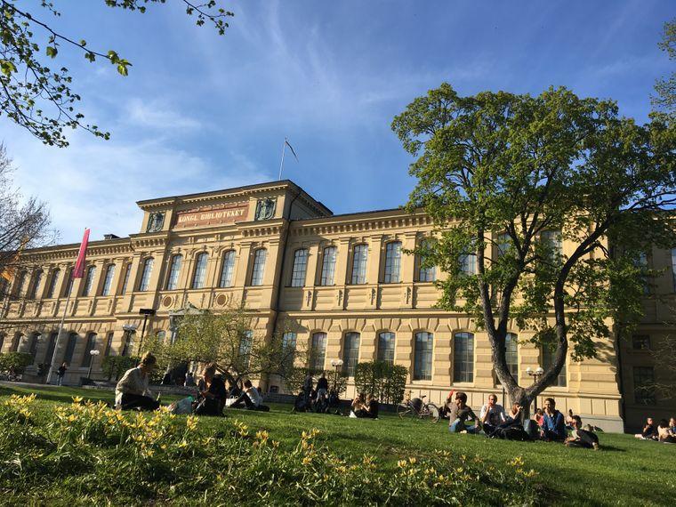Junge Menschen auf der Wiese vor der Königlichen Bibliothek in Stockholm