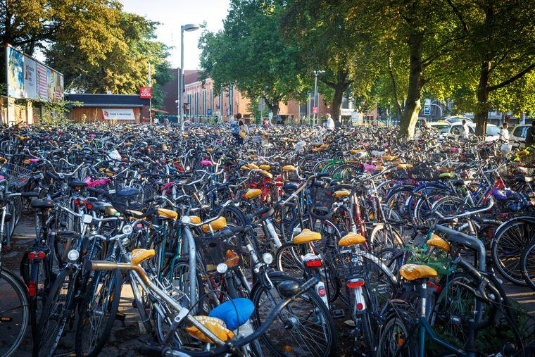 Fahrradstadt Münster: Der Parkplatz am Hauptbahnhof bietet Platz für etwa 800 Fahrräder.
