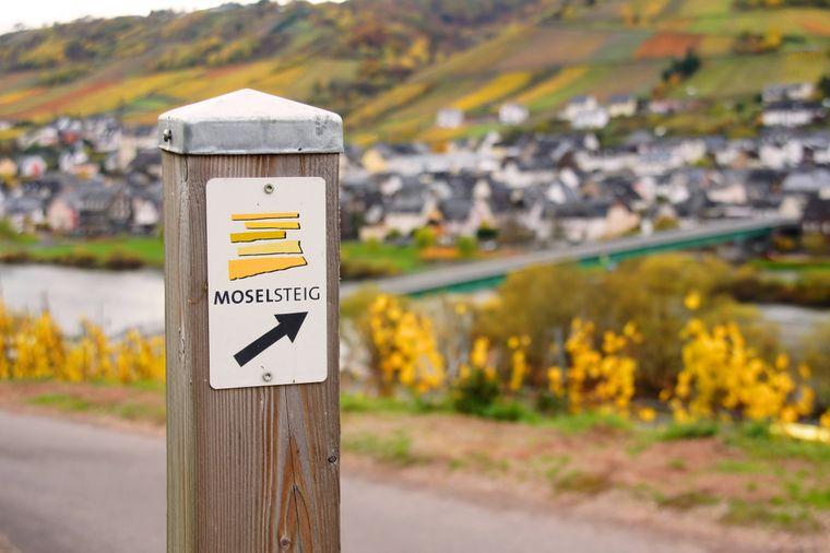 Der Moselsteig bietet abwechslungsreiche Touren für Einsteiger und Profis.